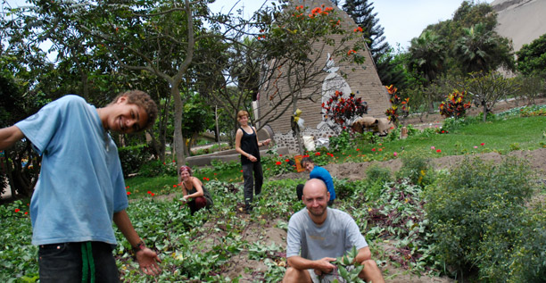 eco-yoga-farm-volunteering1.jpg